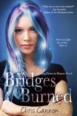 Review: Bridges Burned by Chris Cannon (Blog Tour & Giveaway)
