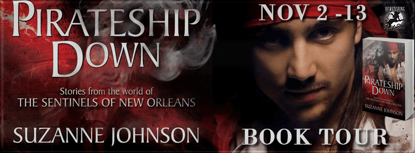 Review: Pirateship Down by Suzanne Johnson (Blog Tour & Giveaway)