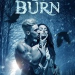Review: Frost Burn by Erica Stevens
